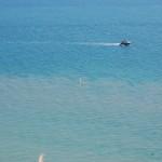 Beachy Head, c/o LB (DCA)